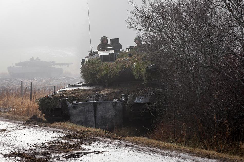 Leopard-2-11-05-2018.jpg